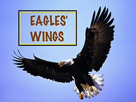 Eagles' Wings, Harry D. Jacobs High School